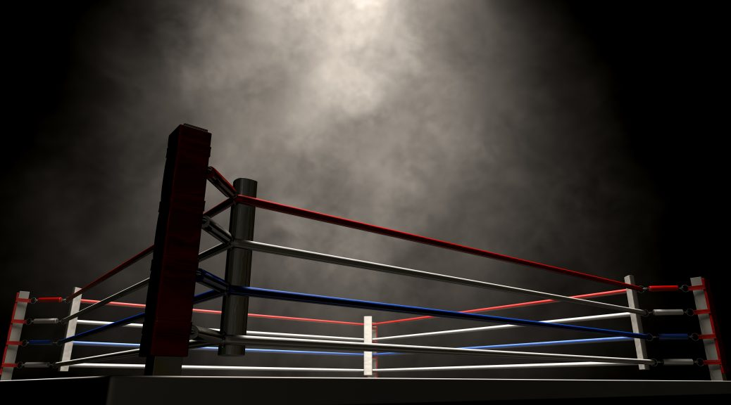 Wrestling ring mankind wwe