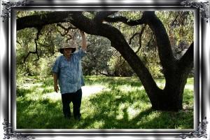 rgl-arboretum-035$0046