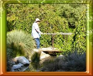 rgl-arboretum-036$0047